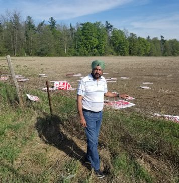 Campaign volunteer Vicky Dhillon in front of vacant field in King City, where Harinder Malhi campaign signs have been dumped.